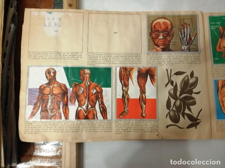 Coleccionismo Álbumes: ÁLBUM EL UNIVERSO Y LA TIERRA. - Foto 37 - 197168636