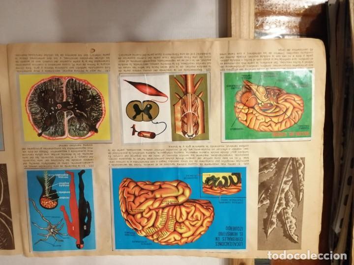 Coleccionismo Álbumes: ÁLBUM EL UNIVERSO Y LA TIERRA. - Foto 39 - 197168636