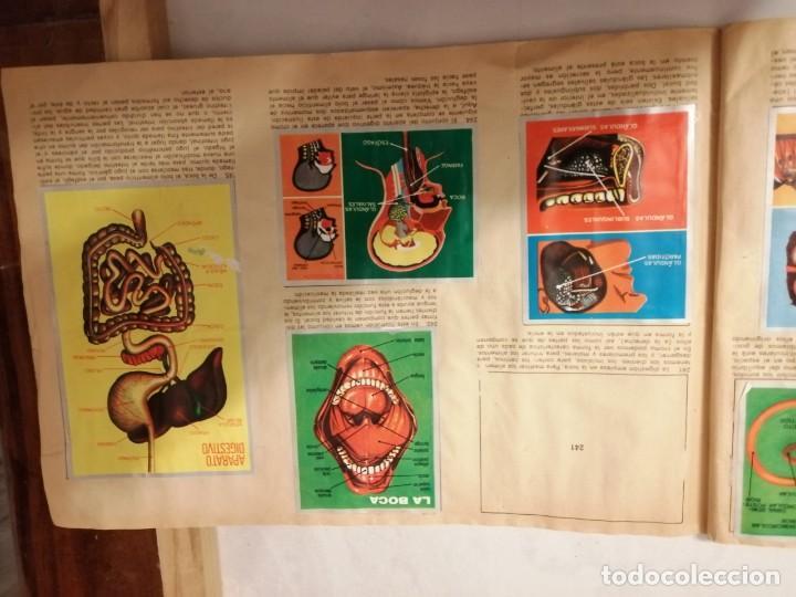 Coleccionismo Álbumes: ÁLBUM EL UNIVERSO Y LA TIERRA. - Foto 42 - 197168636