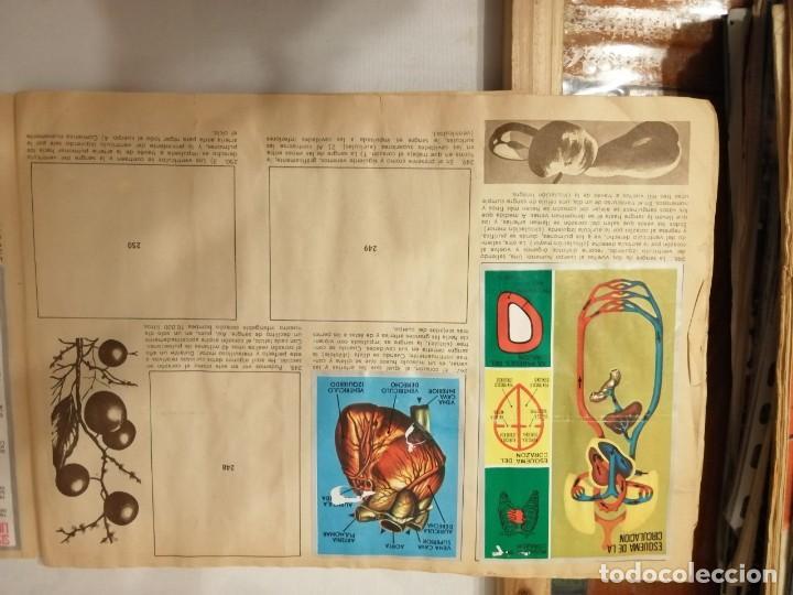 Coleccionismo Álbumes: ÁLBUM EL UNIVERSO Y LA TIERRA. - Foto 43 - 197168636