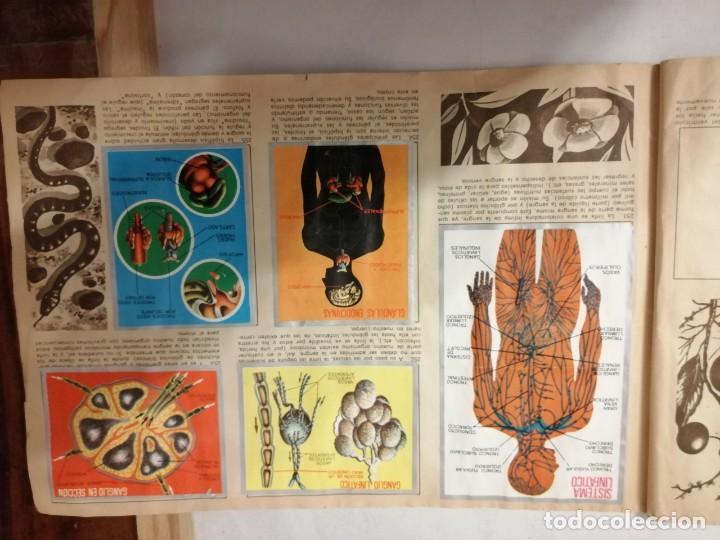 Coleccionismo Álbumes: ÁLBUM EL UNIVERSO Y LA TIERRA. - Foto 44 - 197168636