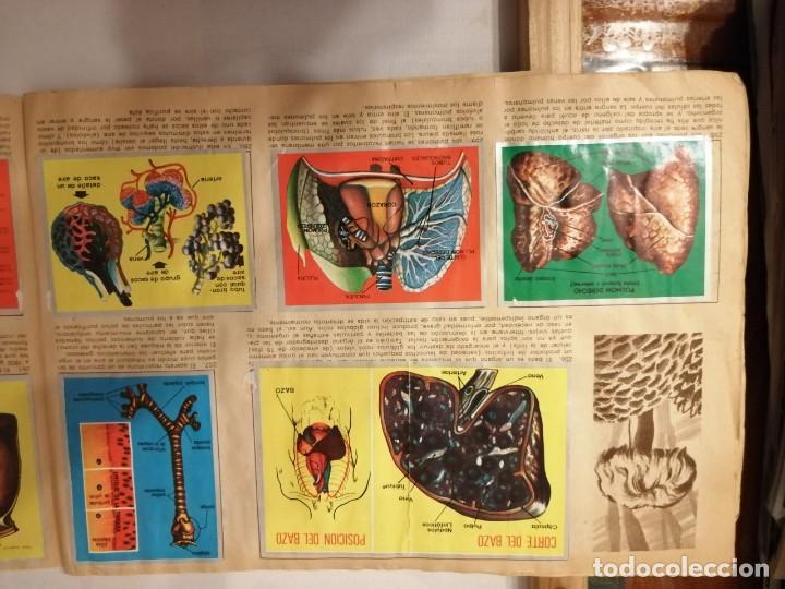 Coleccionismo Álbumes: ÁLBUM EL UNIVERSO Y LA TIERRA. - Foto 45 - 197168636