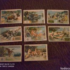 Coleccionismo Álbumes: COLECCIÓN FAUNA 6 CROMOS CACAO SUCHARD SERIE III. Lote 203833825