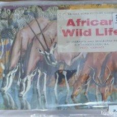 Coleccionismo Álbumes: 33979 - ALBUM DE CROMOS INCOMPLETO - AFRICAN WILD LIFE - EN INGLES. Lote 207153605