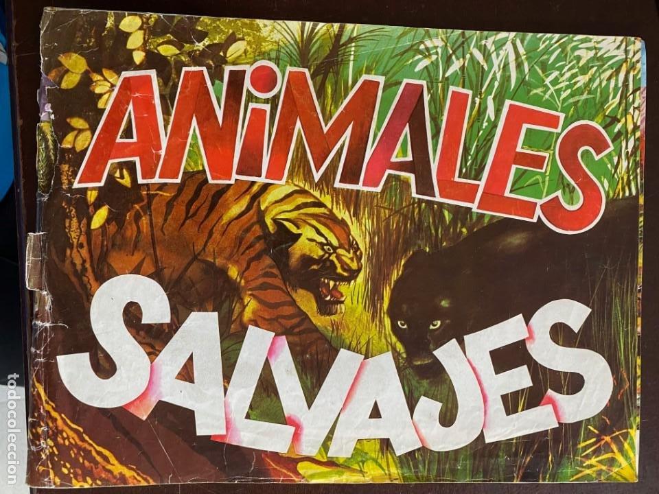 ALBUM INCOMPLETO - ANIMALES SALVAJES DE DIFUSORA DE CULTURA S.A. - SOLO FALTAN 5 CROMOS (Coleccionismo - Cromos y Álbumes - Álbumes Incompletos)