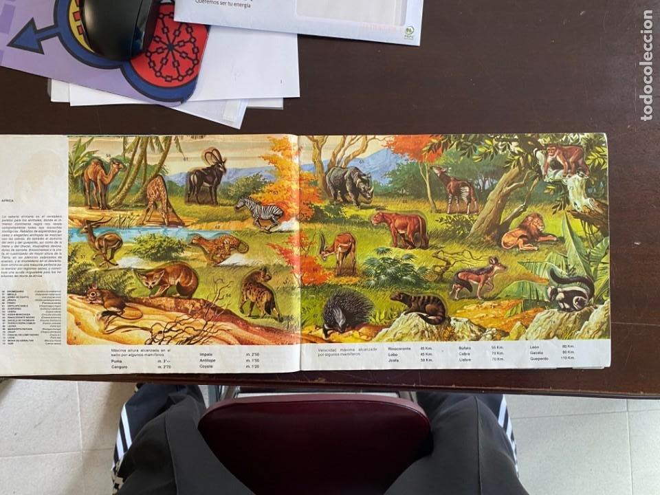 Coleccionismo Álbumes: ALBUM INCOMPLETO - ANIMALES SALVAJES DE DIFUSORA DE CULTURA S.A. - SOLO FALTAN 5 CROMOS - Foto 4 - 253152595