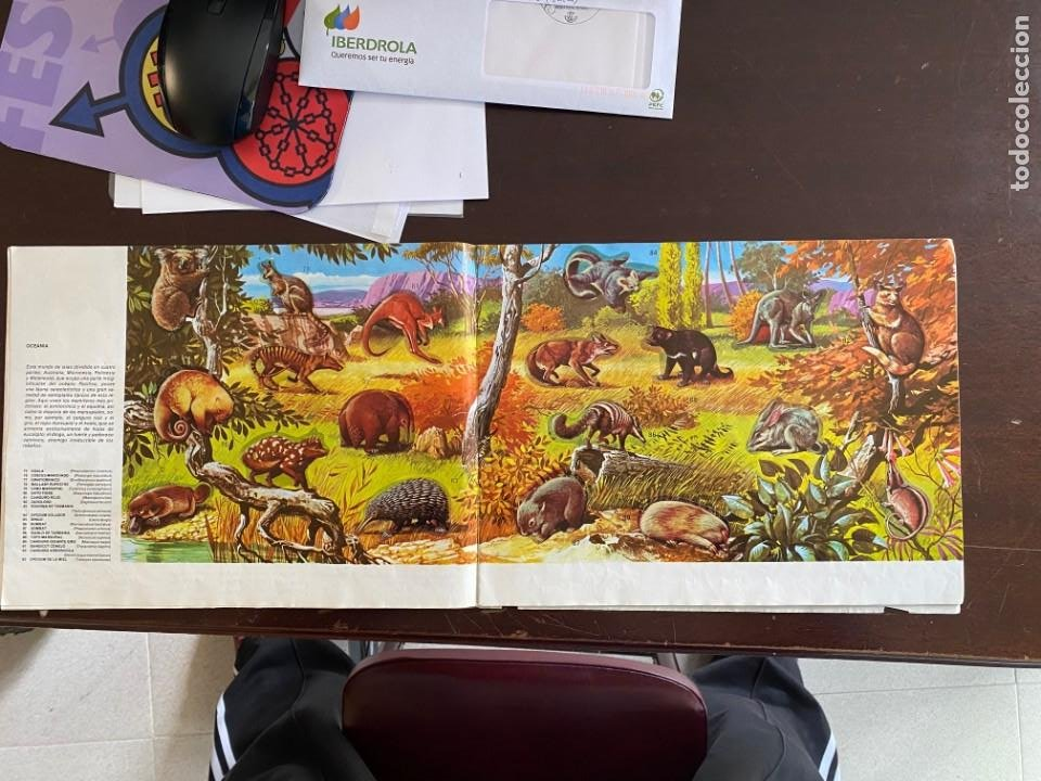 Coleccionismo Álbumes: ALBUM INCOMPLETO - ANIMALES SALVAJES DE DIFUSORA DE CULTURA S.A. - SOLO FALTAN 5 CROMOS - Foto 5 - 253152595