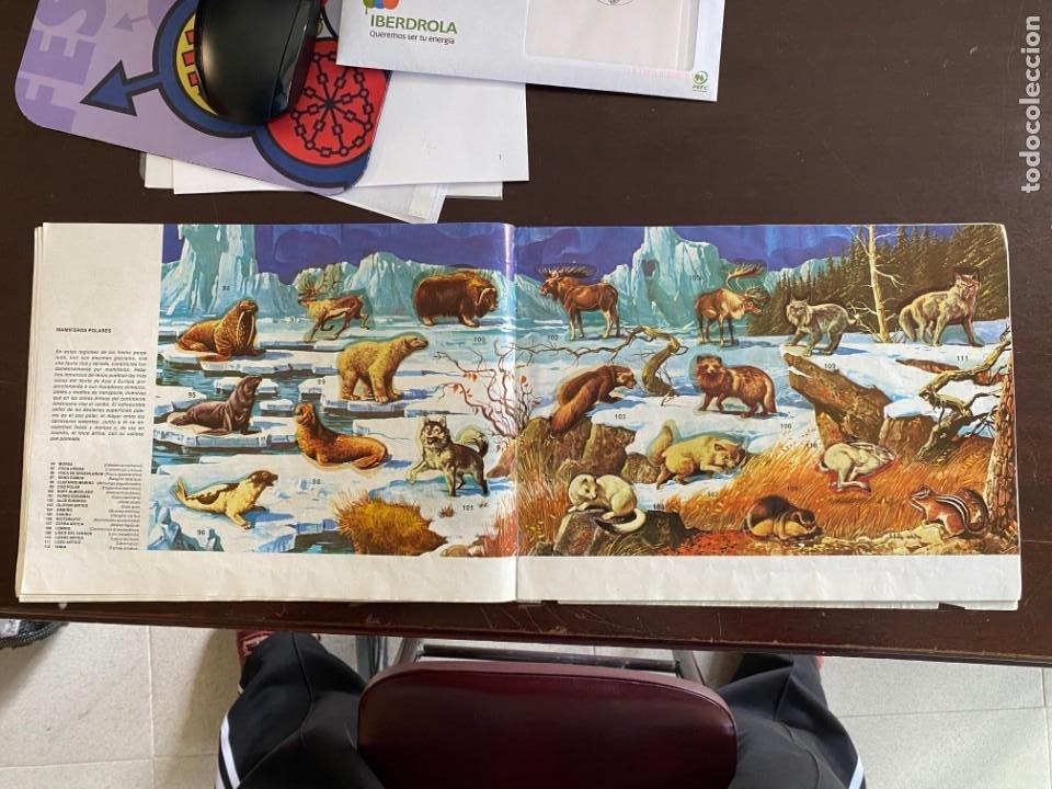 Coleccionismo Álbumes: ALBUM INCOMPLETO - ANIMALES SALVAJES DE DIFUSORA DE CULTURA S.A. - SOLO FALTAN 5 CROMOS - Foto 6 - 253152595