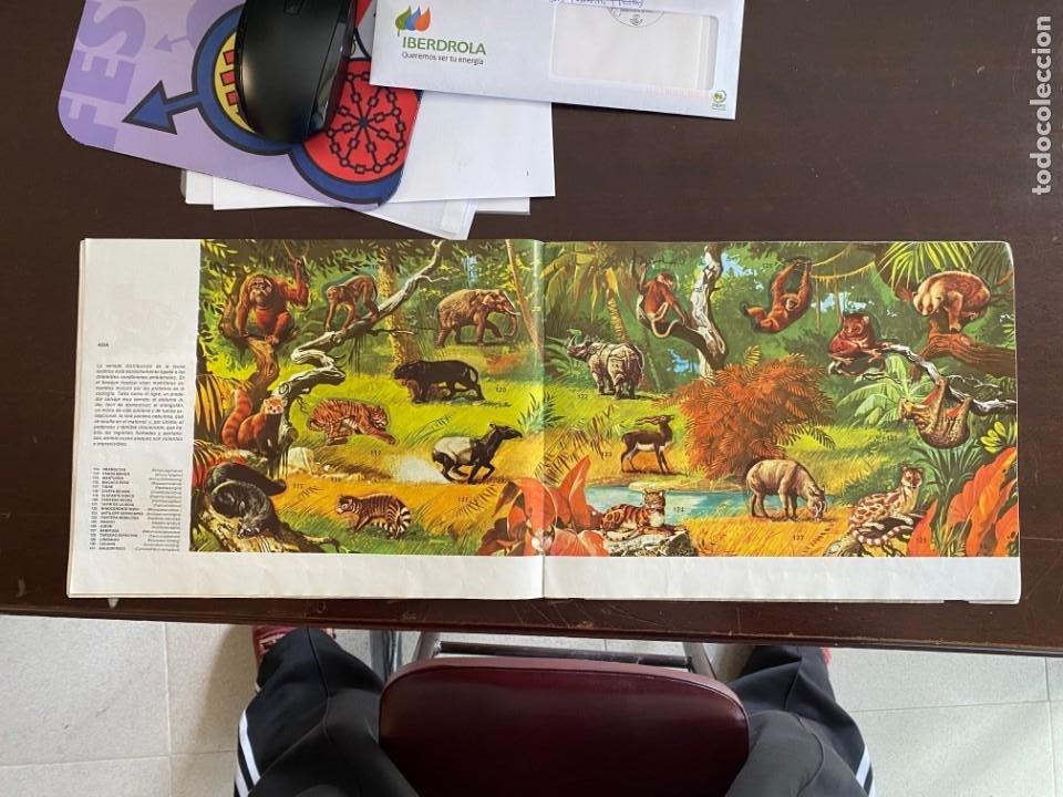 Coleccionismo Álbumes: ALBUM INCOMPLETO - ANIMALES SALVAJES DE DIFUSORA DE CULTURA S.A. - SOLO FALTAN 5 CROMOS - Foto 7 - 253152595