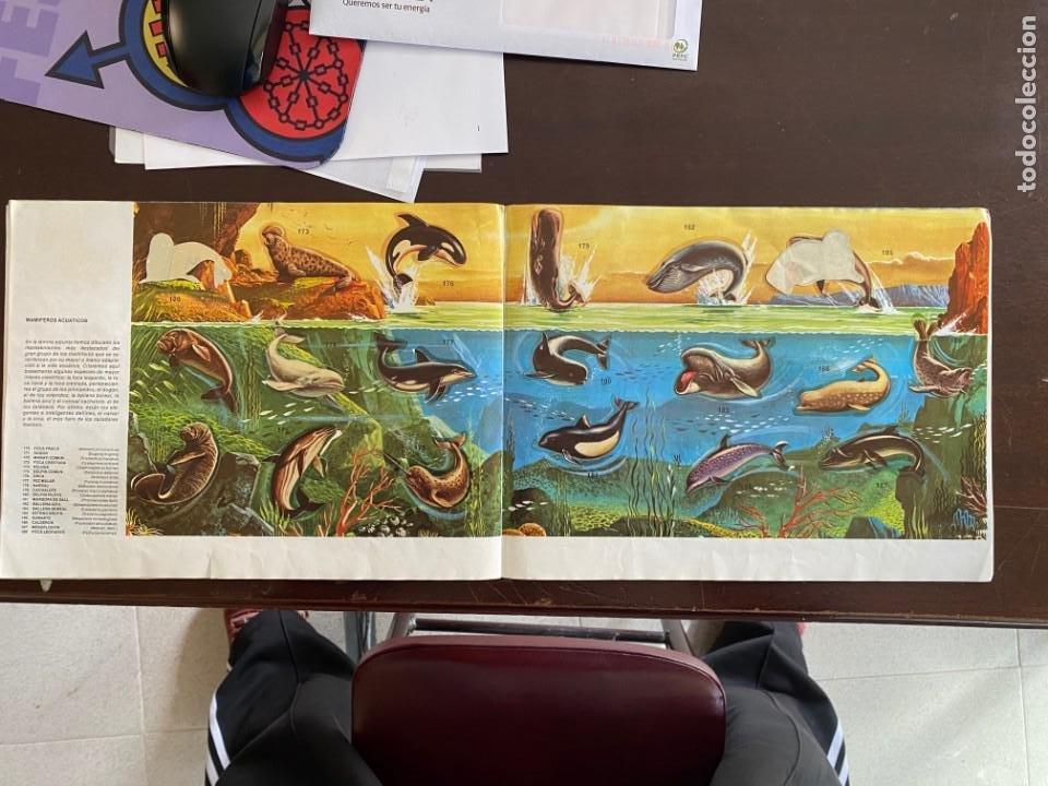 Coleccionismo Álbumes: ALBUM INCOMPLETO - ANIMALES SALVAJES DE DIFUSORA DE CULTURA S.A. - SOLO FALTAN 5 CROMOS - Foto 10 - 253152595