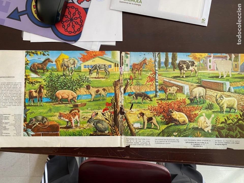 Coleccionismo Álbumes: ALBUM INCOMPLETO - ANIMALES SALVAJES DE DIFUSORA DE CULTURA S.A. - SOLO FALTAN 5 CROMOS - Foto 11 - 253152595