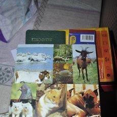 Collezionismo Album: PANRICO. EL MUNDO DE LOS ANIMALES EN 3 DIMENSIONES 1975. LE FALTAN 3 CROMOS. BUEN ESTADO.. Lote 255520840