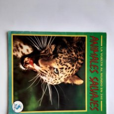 Coleccionismo Álbumes: ANTIGUO ALBUM ANIMALES SALVAJES CONTIENE 84 CROMOS RV. Lote 277663923