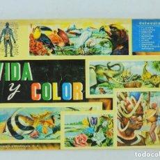 Coleccionismo Álbumes: ALBUM CON CROMOS INCOMPLETO VIDA Y COLOR EDITA ALBUMMES ESPAÑOLES S.A.. Lote 285809698