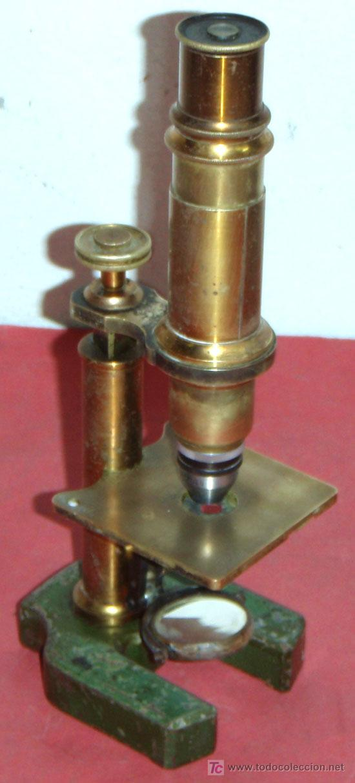 MICROSCOPIO C1880/1900 (Antigüedades - Técnicas - Instrumentos Ópticos - Microscopios Antiguos)