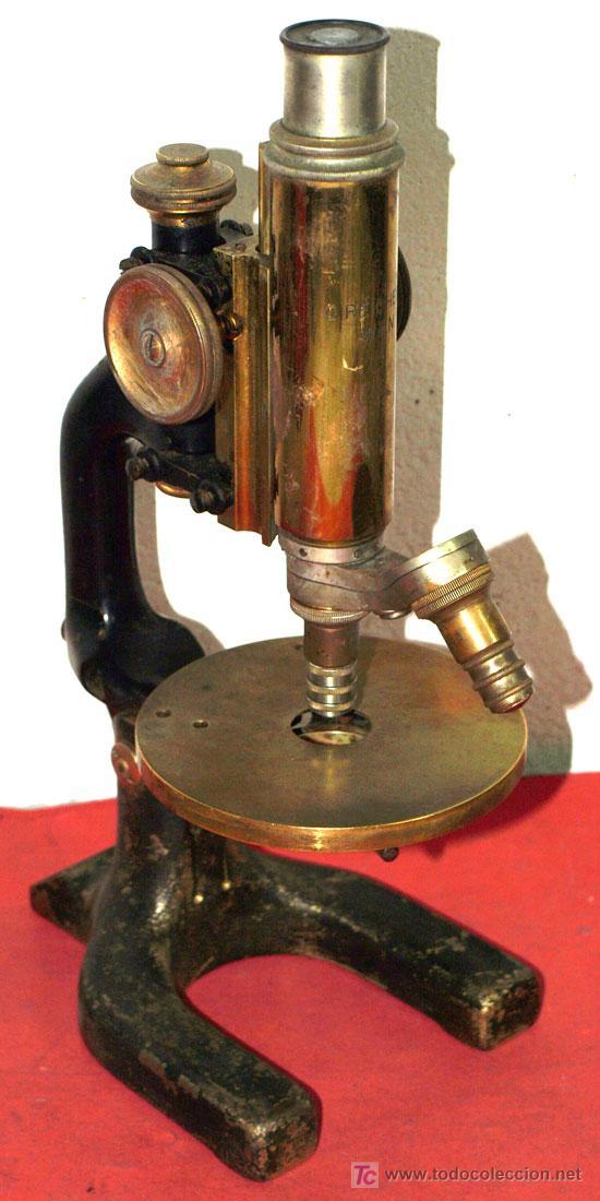 MICROSCOPIO REICHERT C1900 (Antigüedades - Técnicas - Instrumentos Ópticos - Microscopios Antiguos)