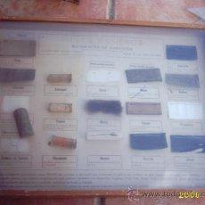 Antigüedades: CAJA DIDÁCTICA S- XIX PARA MUSEO. Lote 15066254