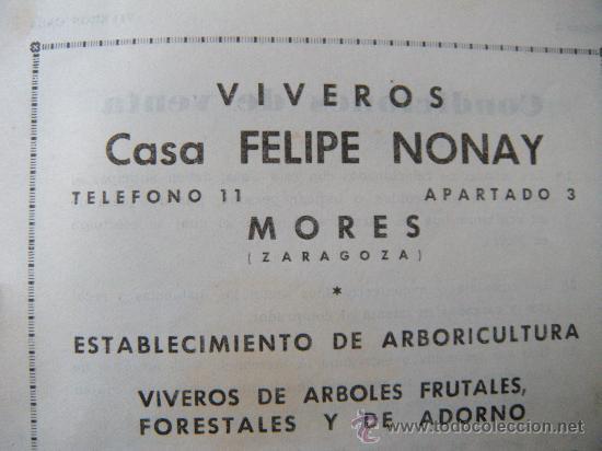 Cat logo viveros casa felipe nonay mores zar comprar for Viveros zaragoza