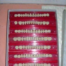 Antigüedades: DENTISTA - MUESTRARIO - CATALOGO DENTISTA ANTIGUO - PLASDENT CAJA CON MUESTRAS DE DIENTES GC42 -36 ,. Lote 36558474