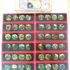 Antigüedades: 165-SERIE DE 12 PLACAS VIDRIO CON FOTOGRAMAS PARA VER CINE EN LINTERNA MÁGICA,FABRICADAS EN,ALEMANIA. Lote 37290804