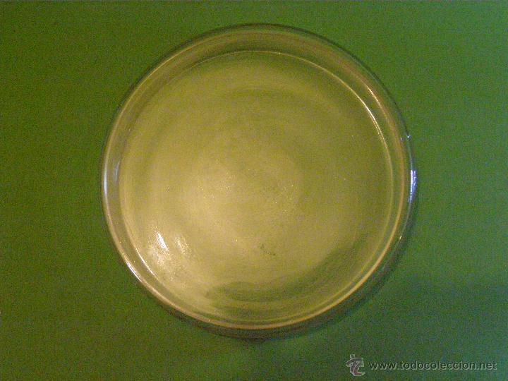 Antigüedades: Antiguo germinador de vidrio o cristal para cultivos o mezclas de laboratorio - - Foto 2 - 41587431