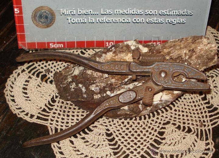 Antigüedades: MUY ANTIGUO TRISCADOR TRABA SERRUCHOS ALEMAN SIGLO XIX - Foto 4 - 42675804