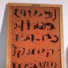 Antigüedades: LOTE DE PIEZAS DE MÁQUINA DE ESCRIBIR UNDERWOOD - LAS QUE SE VEN EN LAS FOTOS. Lote 56285909
