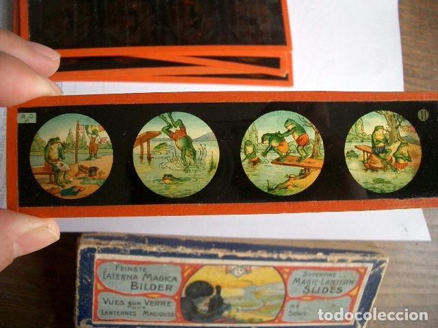 Antigüedades: Caja con placas de linterna mágica con cuentos. Finales del XIX. Ver fotos - Foto 9 - 61898372