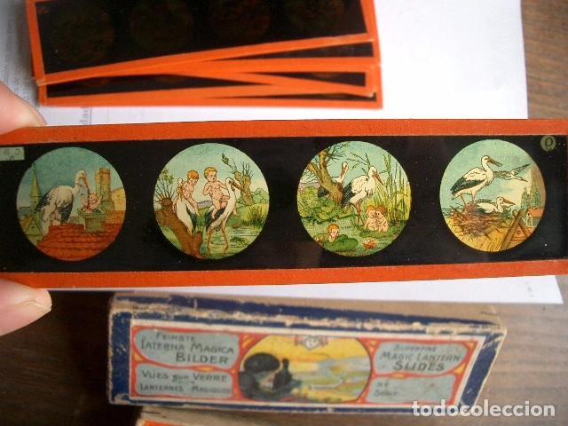 Antigüedades: Caja con placas de linterna mágica con cuentos. Finales del XIX. Ver fotos - Foto 10 - 61898372