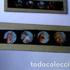 Antigüedades: CRISTAL PINTADO DE LINTERNA MÁGICA SIGLO XIX - 10 POR 2 CM - ANIMALES. Lote 63021440
