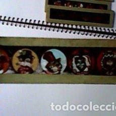 Antigüedades: CRISTAL PINTADO DE LINTERNA MÁGICA SIGLO XIX - 8,50 POR 2 CM - ANIMALES HUMANIZADOS 2. Lote 63022156