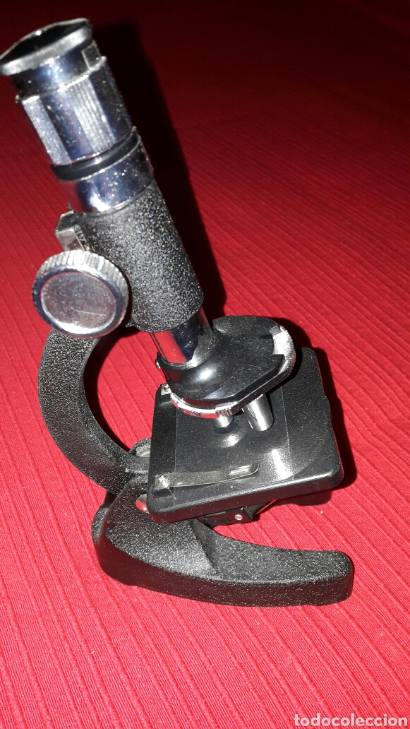 Antigüedades: Microscopio - Foto 3 - 69093435