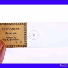 Antigüedades: ANTIGUA MICROFOTOGRAFÍA SOBRE PLACA DE VIDRIO PARA MUESTRAS. INGLATERRA, CIRCA 1900. Lote 85478228