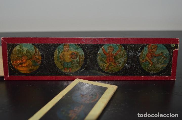 Antigüedades: Lote de 34 cristales de linterna mágica, 14, 13 y 11 cm de largo. originales. - Foto 2 - 94944279
