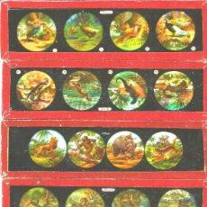 Antigüedades: 165-SERIE 6 PLACAS EN VIDRIO CON FOTOGRAMAS PARA VER CINE EN LINTERNA MÁGICA,FABRICADAS EN ALEMANIA. Lote 98222159