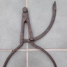 Antigüedades: GRAN COMPAS DE ACERO, PROBABLEMENTE DE FORESTAL 48CM APROX. Lote 108989027