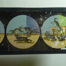 Antigüedades: CRISTAL DE LINTERNA MAGICA. Lote 114103523