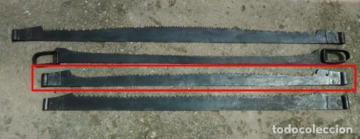 Antigüedades: ANTIGUO TRONZADOR SIERRA SERRÓN DE LEÑADOR. 120 cm. - Foto 5 - 122269551