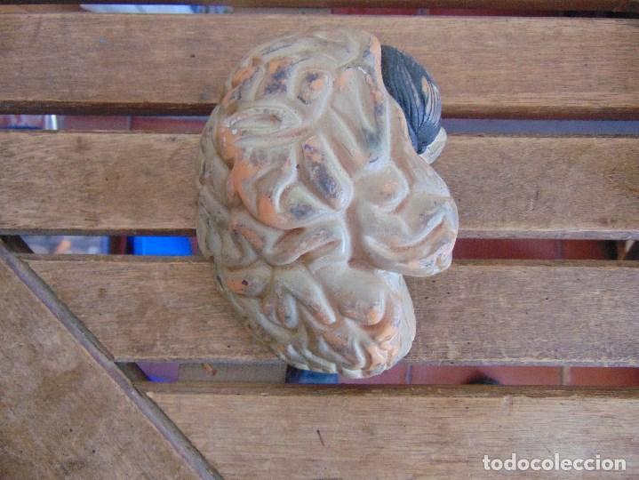 Antigüedades: LOTE DE ORGANOS Y PARTES DEL CUERPO HUMANO ANATOMIA DE FACULTAD O ESCUELA - Foto 3 - 126912523