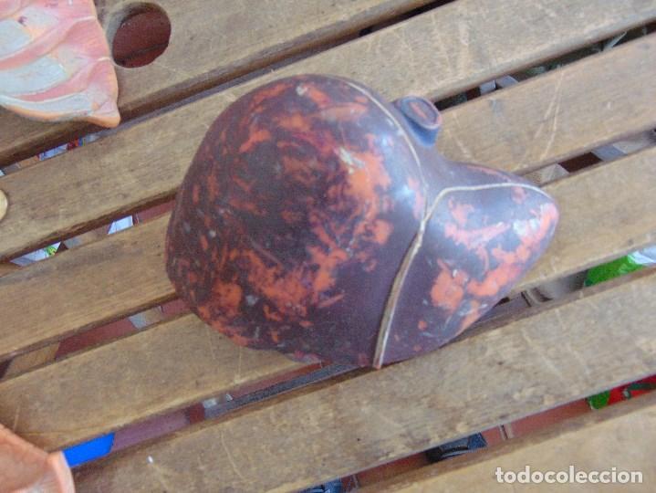 Antigüedades: LOTE DE ORGANOS Y PARTES DEL CUERPO HUMANO ANATOMIA DE FACULTAD O ESCUELA - Foto 19 - 126912523