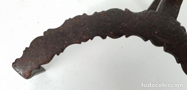 Antigüedades: SOPORTE DE TRÍPODE EN HIERRO FORJADO. SIGLO XIX. - Foto 7 - 131988302