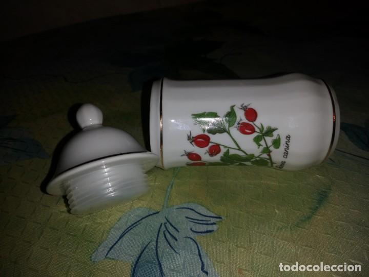 Antigüedades: Frasco con tapa de porcelana Rosa canina,de farmacia. - Foto 3 - 132328458