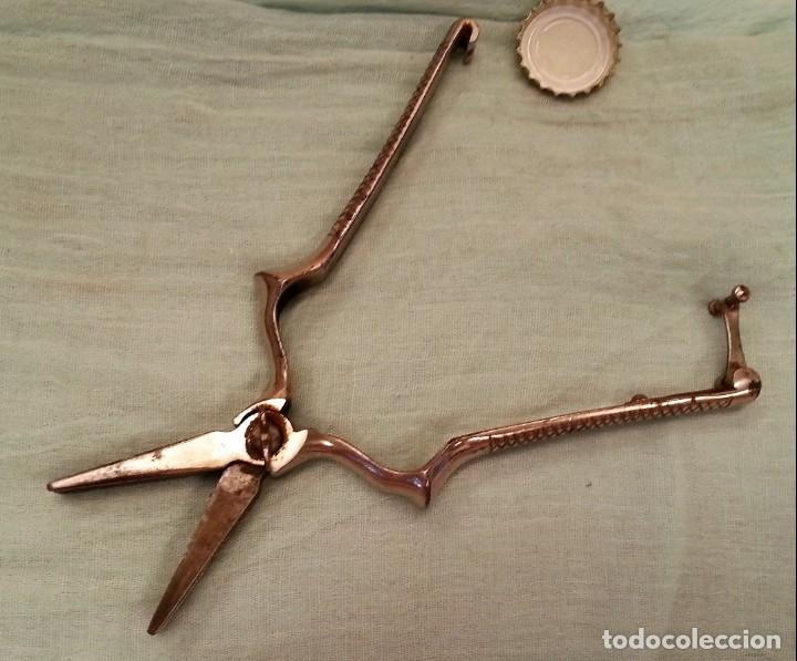 Antigüedades: Masticador hospitalario. Utilizado para trocear la comida para enfermos. Antiguo instrumento. - Foto 3 - 133208906