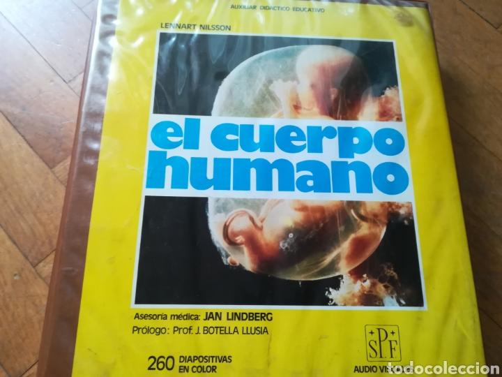 LENNART NILSON, EL CUERPO HUMANO (Antigüedades - Técnicas - Herramientas Profesionales - Medicina)