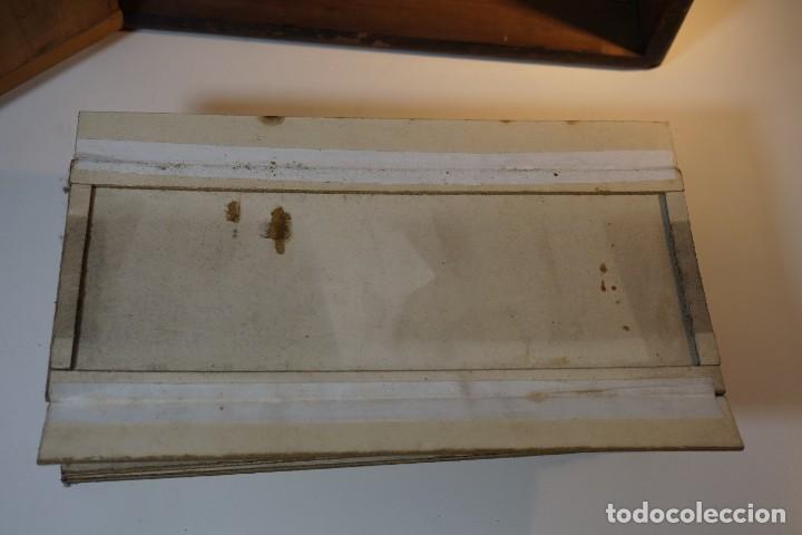 Antigüedades: VINTAGE CABINET para PREPARACIONES DE MICROSCOPIO c. 1920 - Foto 5 - 142063104