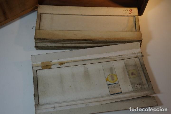 Antigüedades: VINTAGE CABINET para PREPARACIONES DE MICROSCOPIO c. 1920 - Foto 6 - 142063104