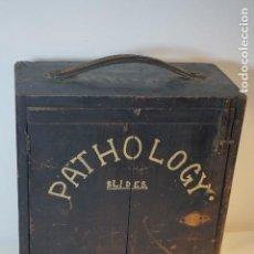 Antigüedades: VINTAGE CABINET PARA PREPARACIONES DE MICROSCOPIO C. 1920. Lote 142063104