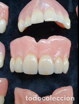 Antigüedades: Expositor completo de dentaduras de principios de 1900. Fantásticas. - Foto 3 - 140093486