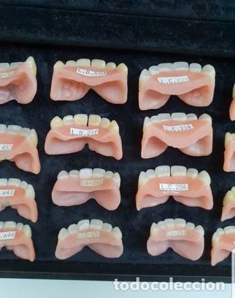 Antigüedades: Expositor completo de dentaduras de principios de 1900. Fantásticas. - Foto 8 - 140093486