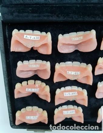 Antigüedades: Expositor completo de dentaduras de principios de 1900. Fantásticas. - Foto 10 - 140093486